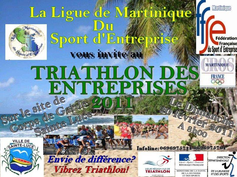 triathlonentreprise20118h.jpg